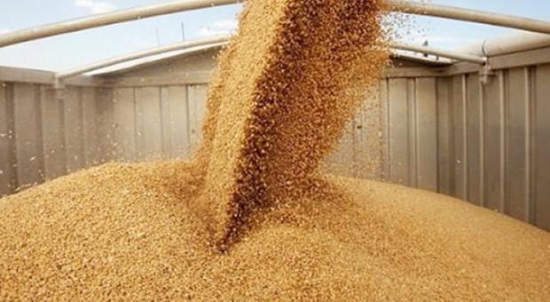 Sesiunea de primire a proiectelor pentru procesarea produselor agricole și pomicole finanțate prin PNDR 2020 se prelungește