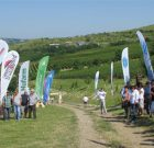Evenimentele Agro Fest destinate viticulturii!