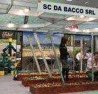 Da Bacco, partenerul dumneavoastră în lumea culturilor viticole!