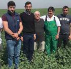 """""""Profesioniştii rapiţei"""" din Oltenia, un proiect realizat de Rapool România împreună cu Agriso, în ferma Agromec Vișina"""