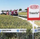 Tehnologia Corteva Agriscience la cultura de grâu,prezentată fermierilor din Argeş