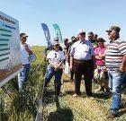 Performanță și eficiență – coordonatele Corteva Agriscience™ – Divizia de agricultură a DowDuPont