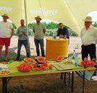 Producții de top cu hibrizii de pepene Syngenta