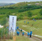 Agro Fest 2018, o lecţie de profesionalism la domeniul viticol Amfiteatru Vitis