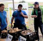 Recomandările Syngenta pentru cultura cartofului, prezentate la un eveniment cu tradiție în zona de centru a țării!