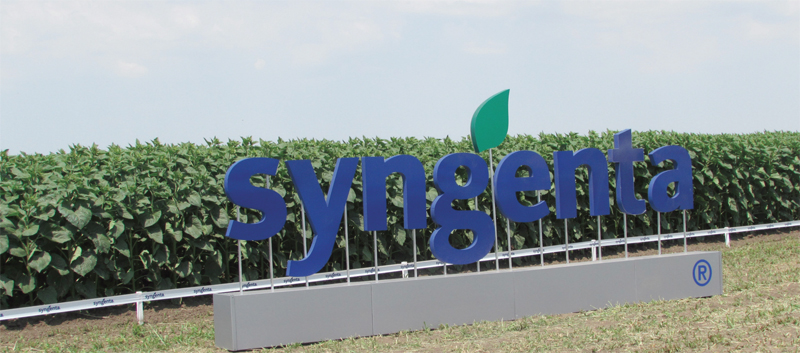 syngenta logo camp