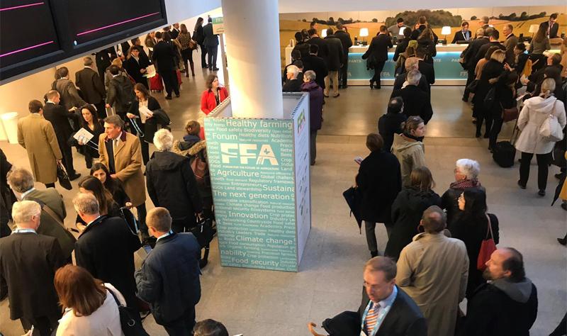 FFA forum