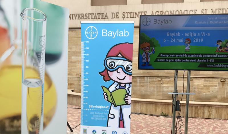 Baylab2019