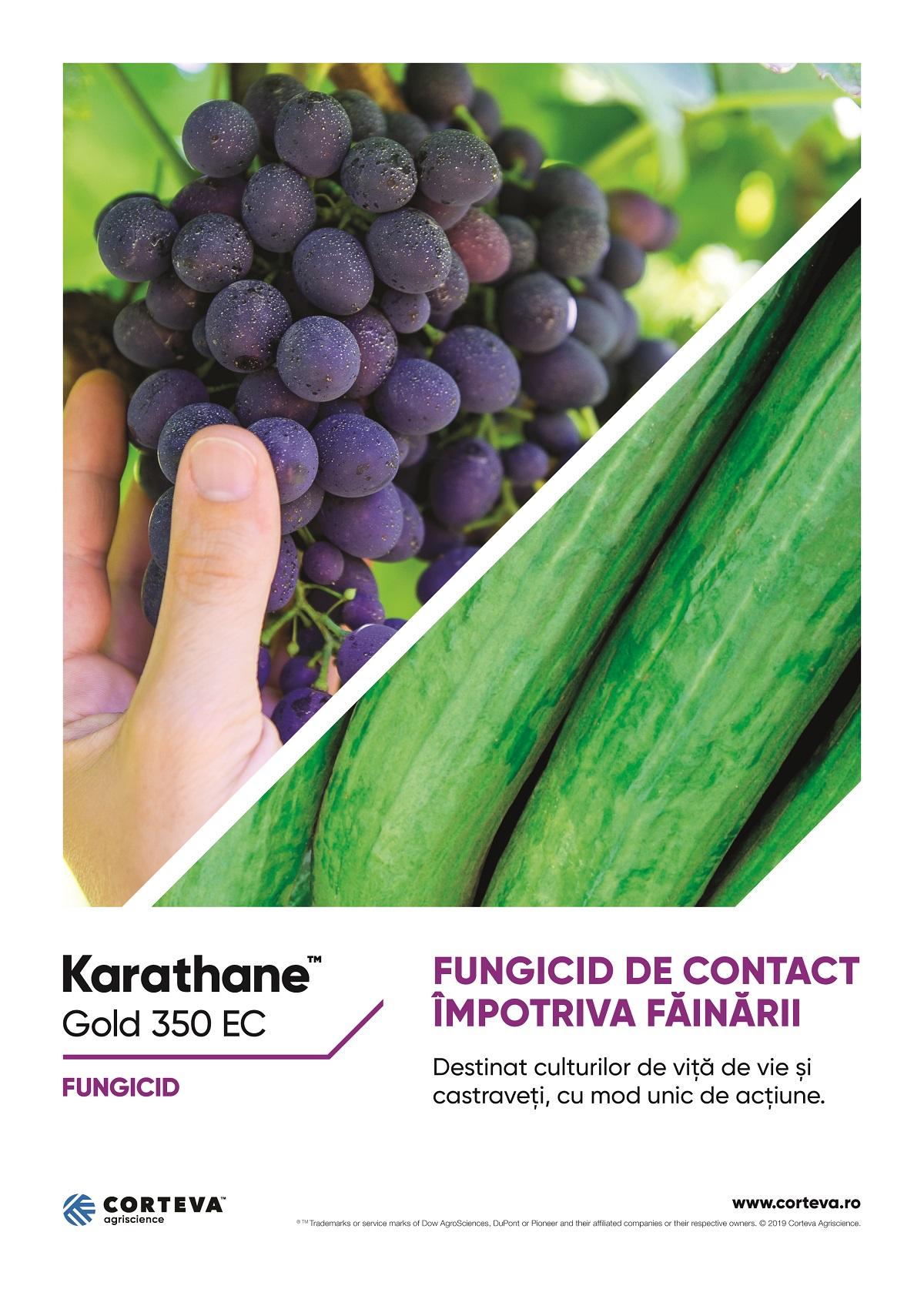 Macheta Karathane_A4