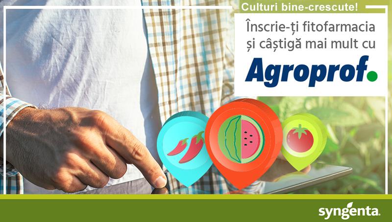 Syngenta Agroprof - seminte legume2