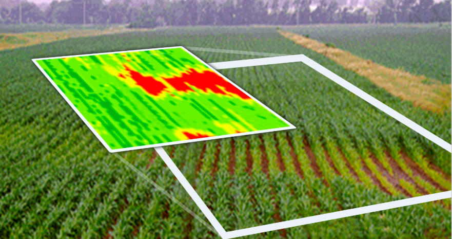 Climate FieldView2