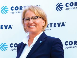 Corteva Maria_Cirja 800