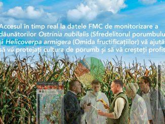 FMC articol