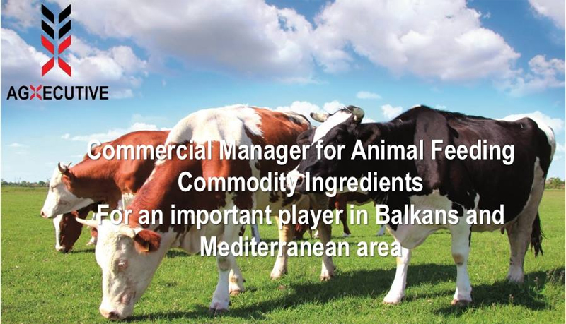 Agxecutive Commercial Manager for Animal