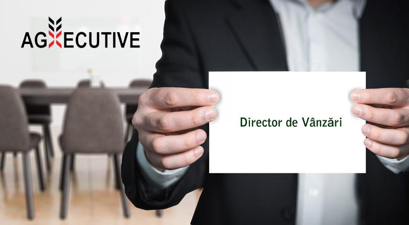 agxecutive director vanzari