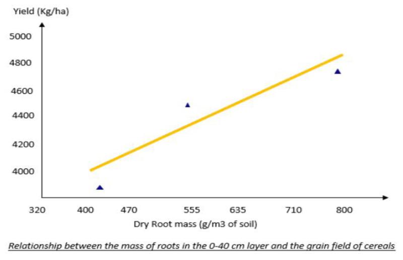 grafic timac1