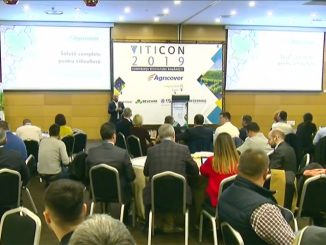 viticon2019