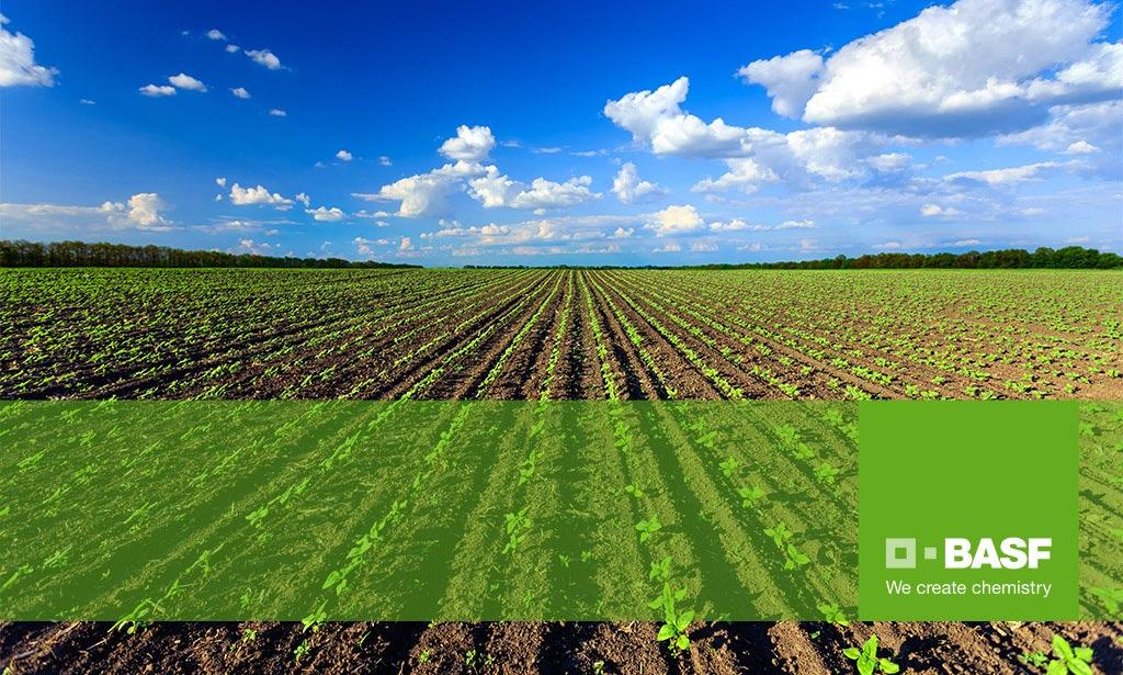 basf agricultural