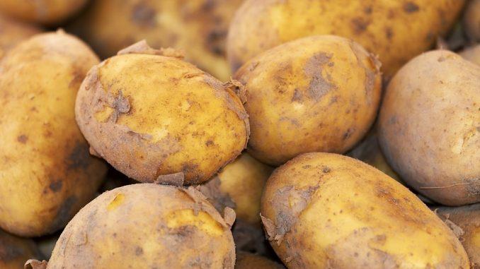 cartofi-678x381