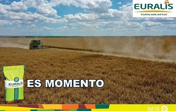ES-MOMENTO-600-600x381