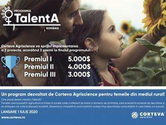 Macheta TalentA_800