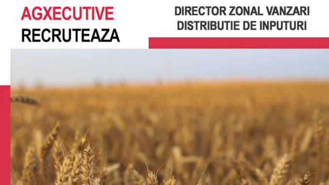 agxecutive-DZV-CT-678x381-1