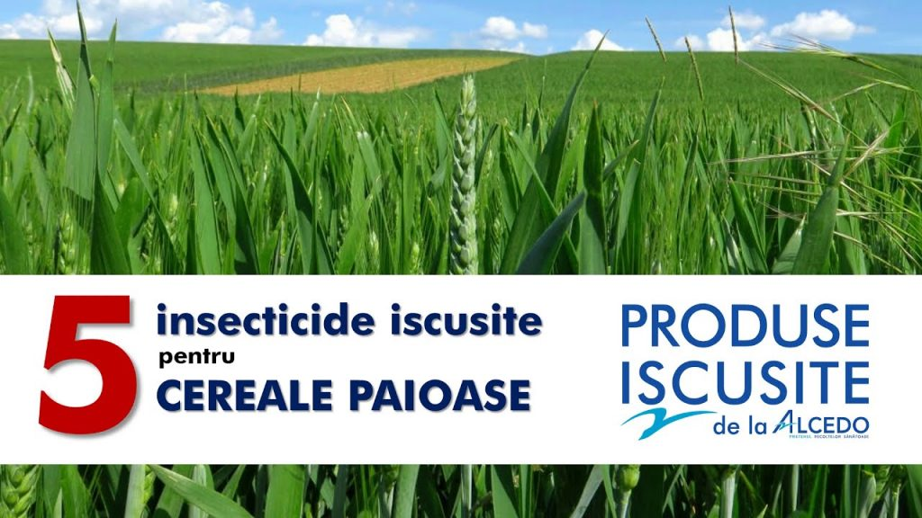 5 insecticide